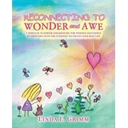 Reconnecting to Wonder and Awe: A Spiritual Playbook for Bringing the Wisdom and Energy of Your Soul into the Everyday to Create Your Best Life, Paperback/Linda E. Grimm