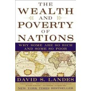 The Wealth and Poverty of Nations: Why Some Are So Rich and Some So Poor, Paperback