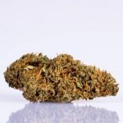 CBD Blüten Kreisky 10g (1dag) -20% RABATT