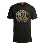 AFL Mens Stamp Tee Richmond Tigers [Size:S]