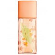 Elizabeth Arden Green Tea Nectarine Blossom Eau De Parfum 100 Ml Spray - Tester (085805544836)