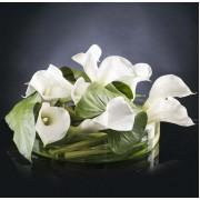 Aranjament floral CIOTOLA BASSA CON CALLE