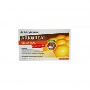 Arkopharma Intelectum Arkoreal 20 Ampollas