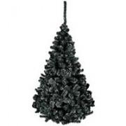 Crna Novogodišnja Jelka - Black Harmony - 250 cm