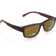 Invu Rectangular Sunglasses(Brown)