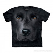 Hi-tech cool tričká - Labrador
