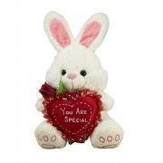 Tickles White Loving Bunny with You are Special Heart Valentine Stuffed Soft Plush Toy 18 cm