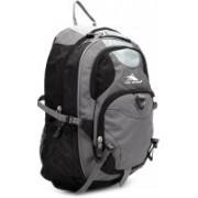 High Sierra Neuro Laptop Backpack(Black, Grey)