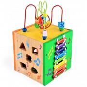 Cub educativ multifunctional (TIP PRODUS: Jucarii si jocuri educative)
