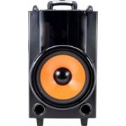 Boxa portabila PNI FunBox BT201 cu Bluetooth 200W Mixer acumulator 5000 mAh MP3 player Radio FM slot micro SD USB AUX IN Display Microfon