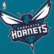 Amscan Sports and Tailgating Nba Charlotte Hornets Luncheon Childrens-Party-Napkins, 96 Pieces