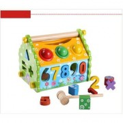 Emob Multi-Functional Dismounting Wisdom House Wooden Learning Blocks Play Set for Kids (Multicolor)