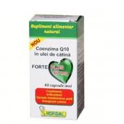 Coenzima Q10 Hofigal in ulei de catina