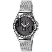 Dk Sliver Party ladies analog watches For Women