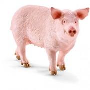 Schleich Pig, Multi Color