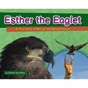 Esther the Eaglet: A True Story of Rescue and Rehabilitation, Hardcover/Christie Gove-Berg